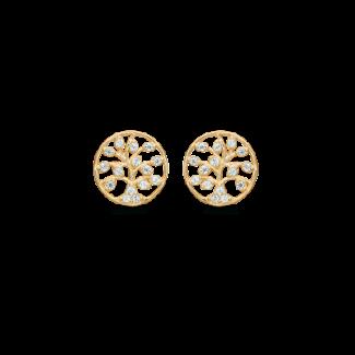 Støvring Design 8kt Guld Livets Træ Ørestik med Zirkonia 60242040